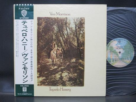 Van Morrison Tupelo Honey Japan Early Press LP OBI INSERT